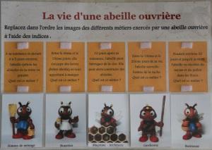 jeu-les-métiers-dune-abeille-ouvrière1