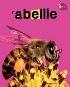 abeille6