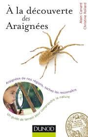 araignee1
